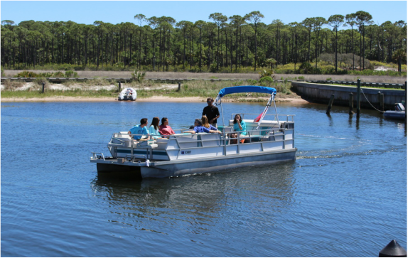 Boat rentals inshore charters fishing guide port st joe bay for Cape san blas fishing report